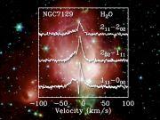 b_180_0_3355443_00_images_jubileum50jaar_50jaar_onderzoekers_degraauw15.jpg